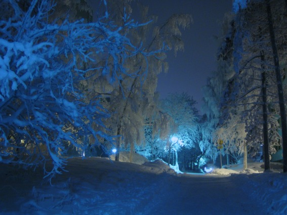 winter-84173_1920